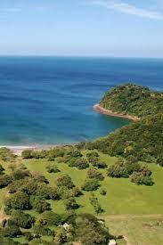 Playa Bongo Directory