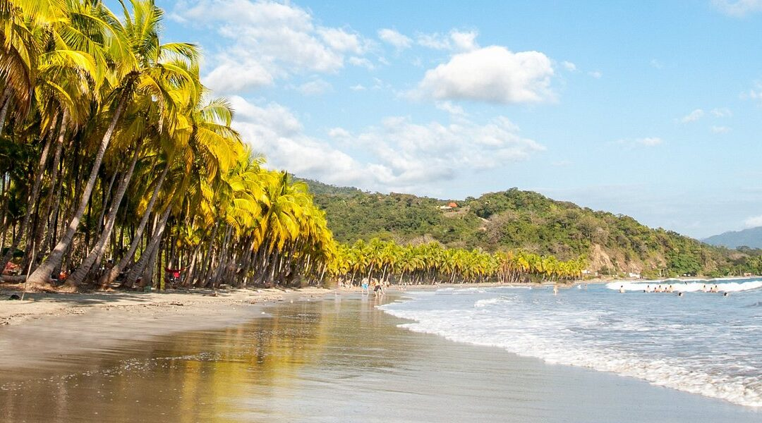 Playa Samara Directory